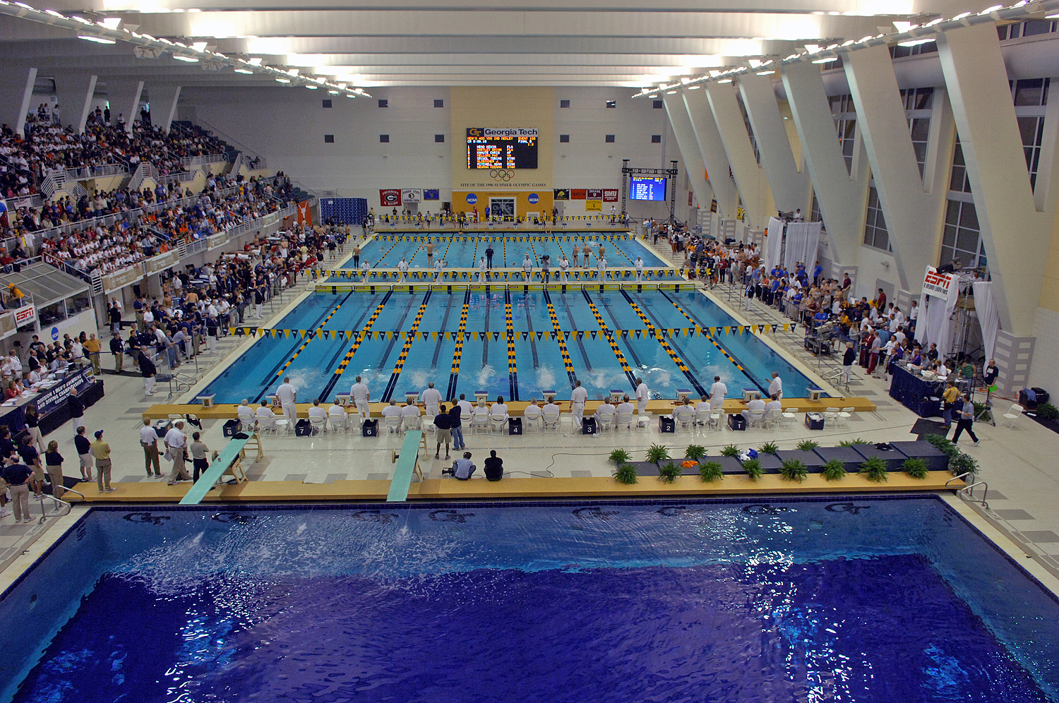 Acc Swimming And Diving Ncaa Men S Women