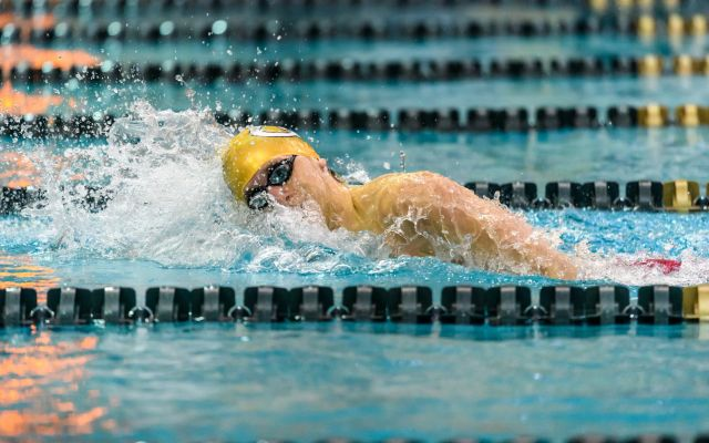 Jackets Compete at National and State Events