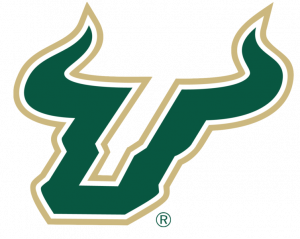 USF - Whiteout