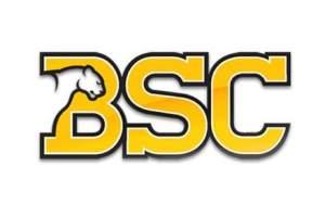 BSC Indoor Icebreaker