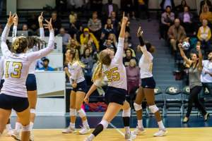 Volleyball Falls To No. 15 Florida In Four Sets