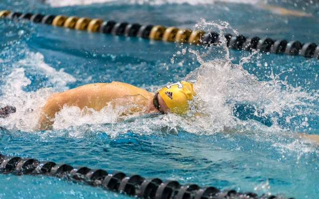 Swimming & Diving Wraps Up ACC Action Saturday
