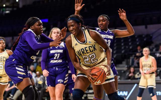 Regins' 16 Boards Leads Tech Past Florida Gulf Coast, 58-48