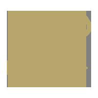 geot-priority-icon-1