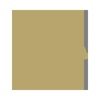 geot-priority-icon-2