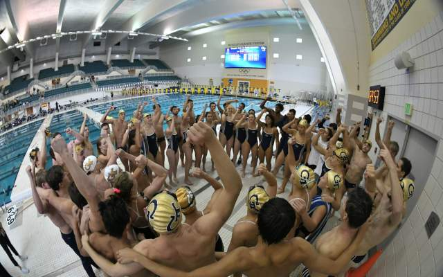 Nine Men's Swimmers Will Compete In NCAA Championships