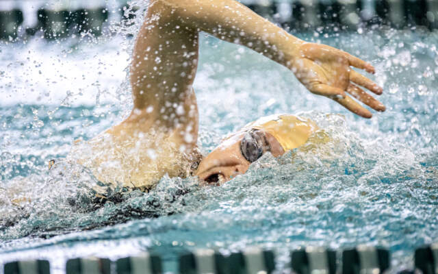Swim-Dive Readies for First Meet of 2020
