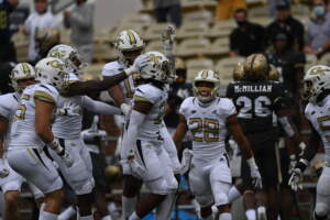 Yellow Jackets Wreck Gamecocks, 41-14